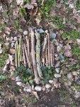 Environmental art in Merton Wood 2013