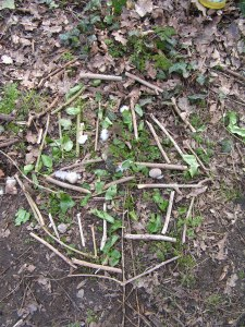 Environmental art in Merton Wood 2013