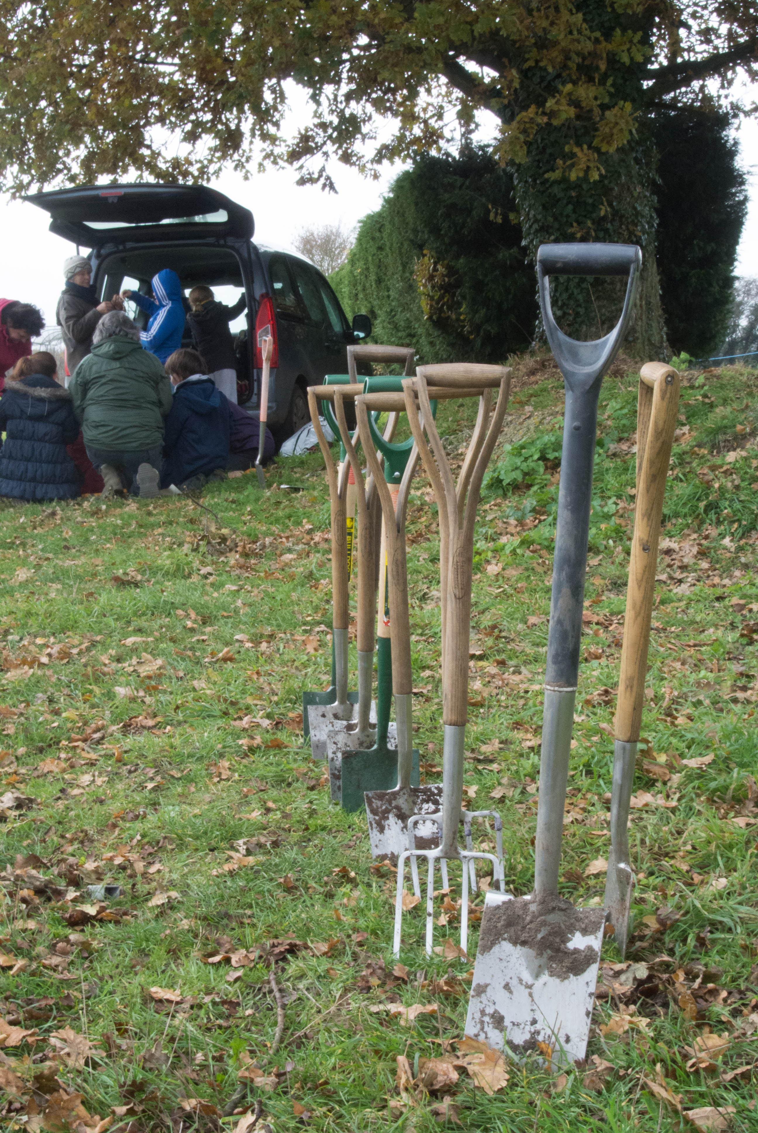 Hedge planting on the playing field and making stick stars for Christmas 2013